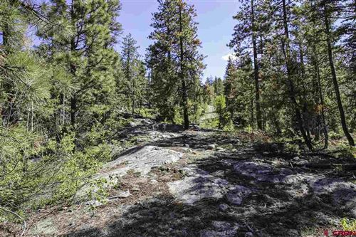 Photo of 2083 Lake Purgatory Drive, Durango, CO 81301 (MLS # 769865)