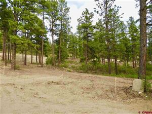 Photo of (Lot 81) TBD Bell Flower Court, Durango, CO 81301 (MLS # 751866)