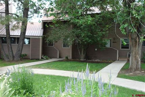 Photo of 33 Davis Cup Drive, Pagosa Springs, CO 81147 (MLS # 784869)