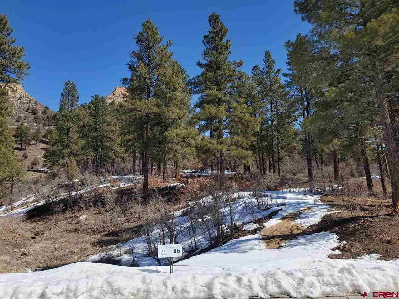 Photo of (Lot 86) 46 Bell Flower Court, Durango, CO 81301 (MLS # 751874)