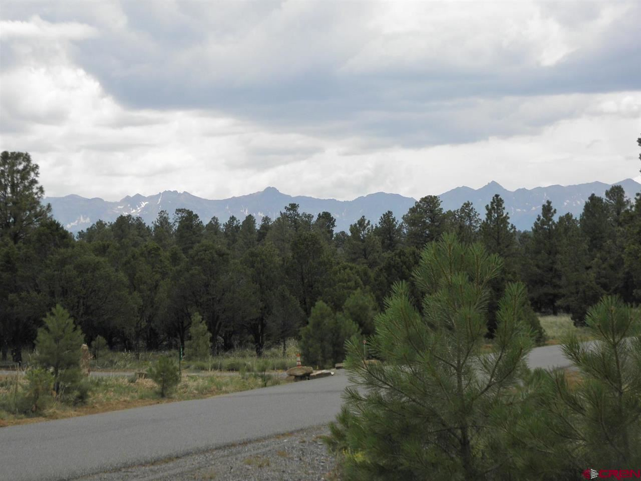 Photo of 215 Fisher Canyon Drive, Ridgway, CO 81432 (MLS # 784886)