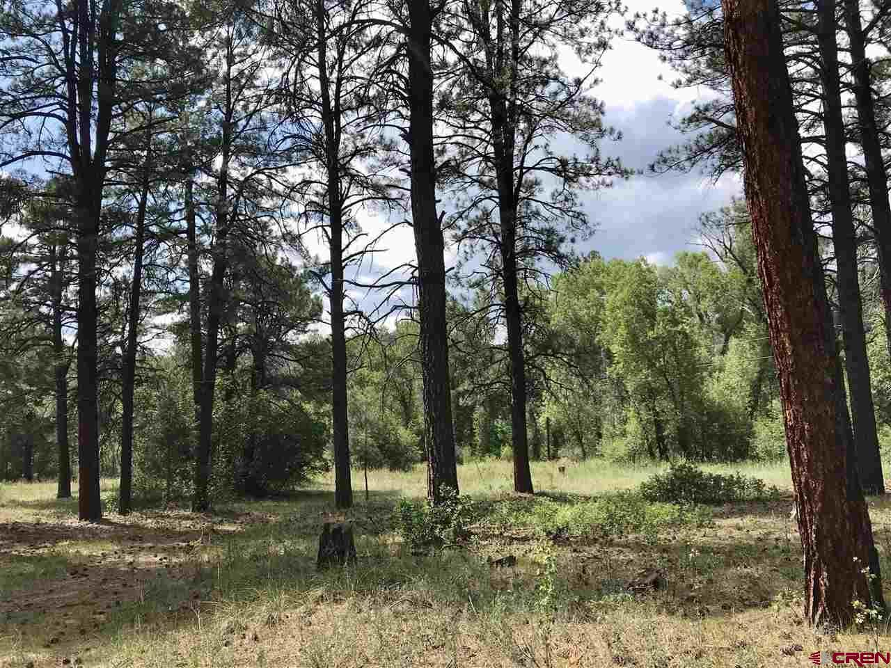 Photo of 147A & X Aspen Road, Pagosa Springs, CO 81147 (MLS # 784889)