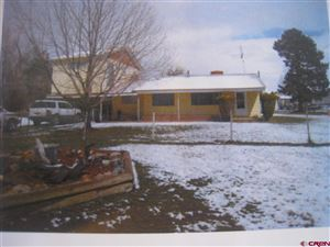 Photo of 26916 Road R, Dolores, CO 81323 (MLS # 763893)