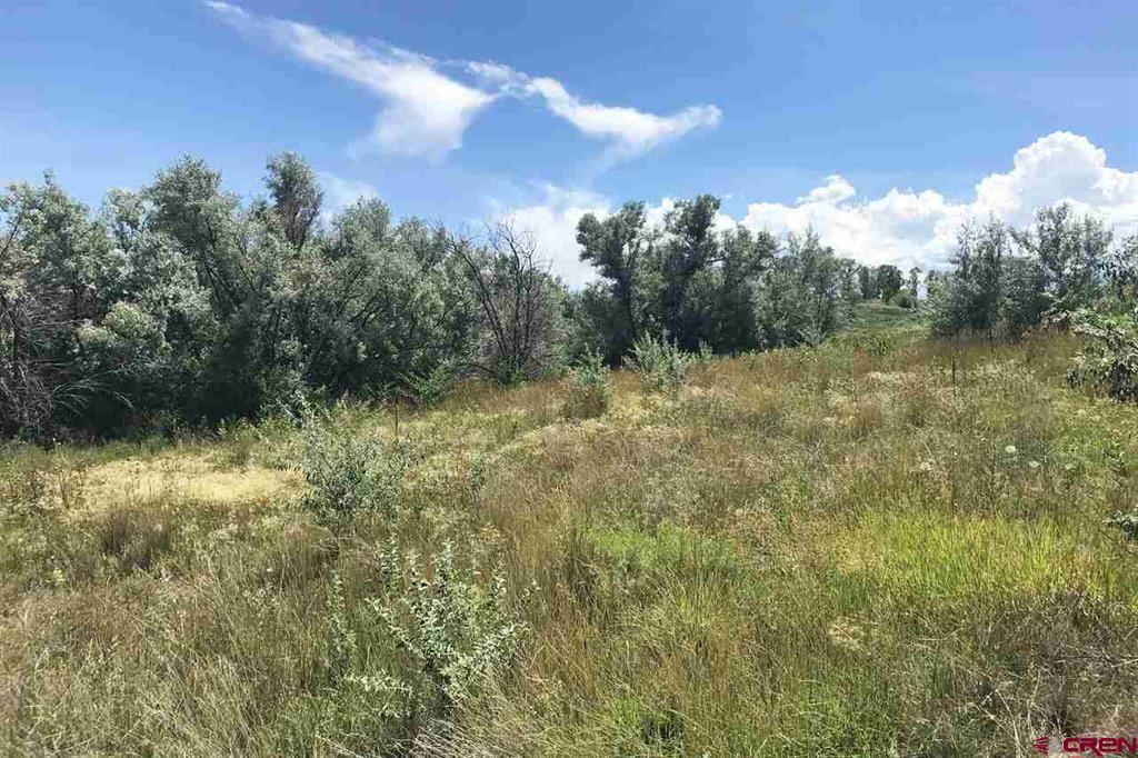 Photo of Lot 3 5950 Road, Montrose, CO 81403 (MLS # 784893)