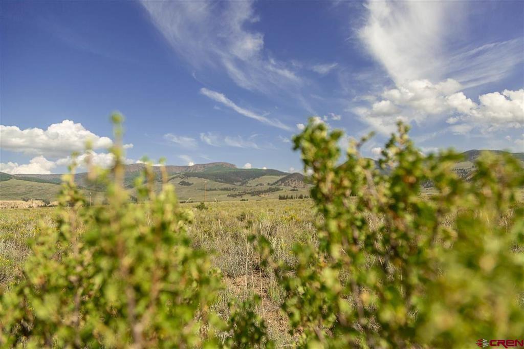 Photo of 410 Mac Farlane Drive, Creede, CO 81130 (MLS # 784894)