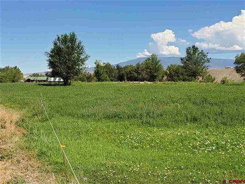 Photo of 959 1200 Road, Delta, CO 81416 (MLS # 766899)