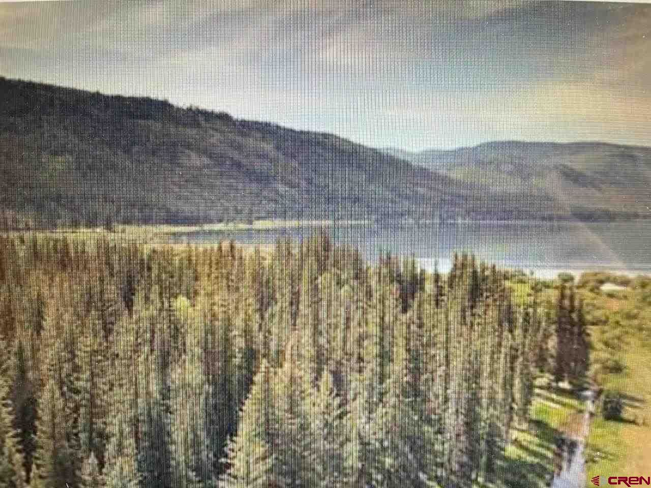 Photo of 201 Golden Forest Road, Vallecito Lake/Bayfield, CO 81122 (MLS # 784899)