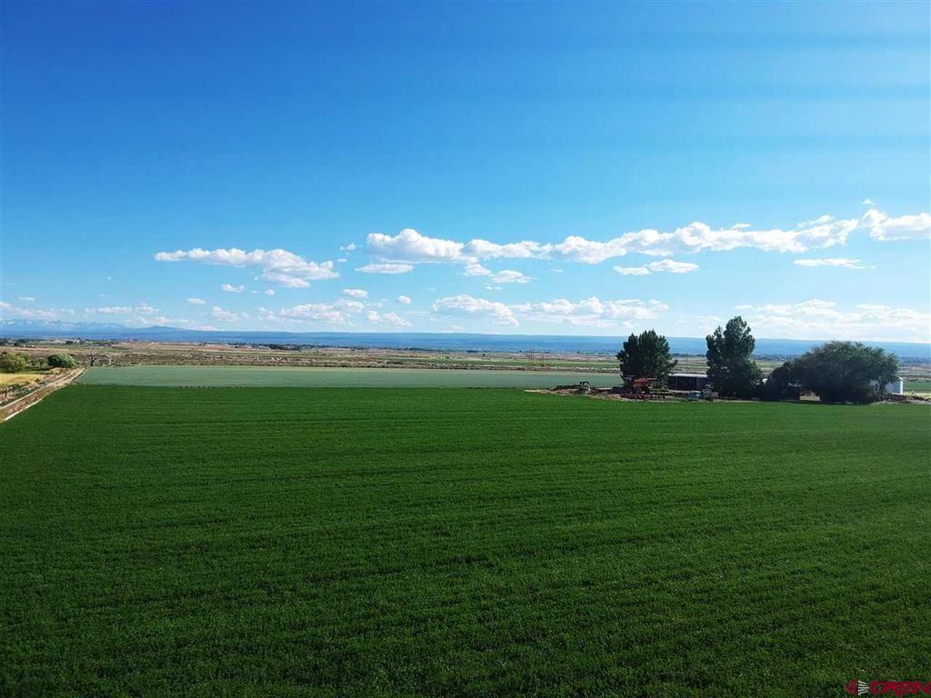 Photo of 63118 Falcon Road, Montrose, CO 81401 (MLS # 784904)