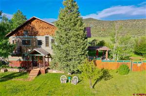 Photo of 1065 Meadows Circle, Ridgway, CO 81432 (MLS # 758906)