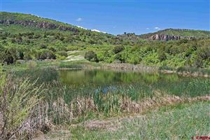 Photo of TBD Old Hwy 90, Montrose, CO 81403 (MLS # 759907)