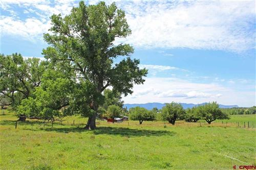 Tiny photo for 25453 Road P, Dolores, CO 81323 (MLS # 759911)