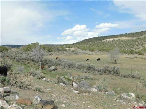 Tiny photo for 520 SE Deer Trail Avenue, Cedaredge, CO 81413 (MLS # 780914)