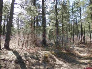 Photo of 638 Carol's Curve, Pagosa Springs, CO 81147 (MLS # 730920)