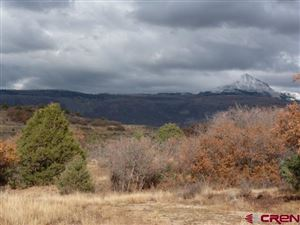 Tiny photo for LOT 41 LONE CONE RANCHES, Dolores, CO 81323 (MLS # 747921)