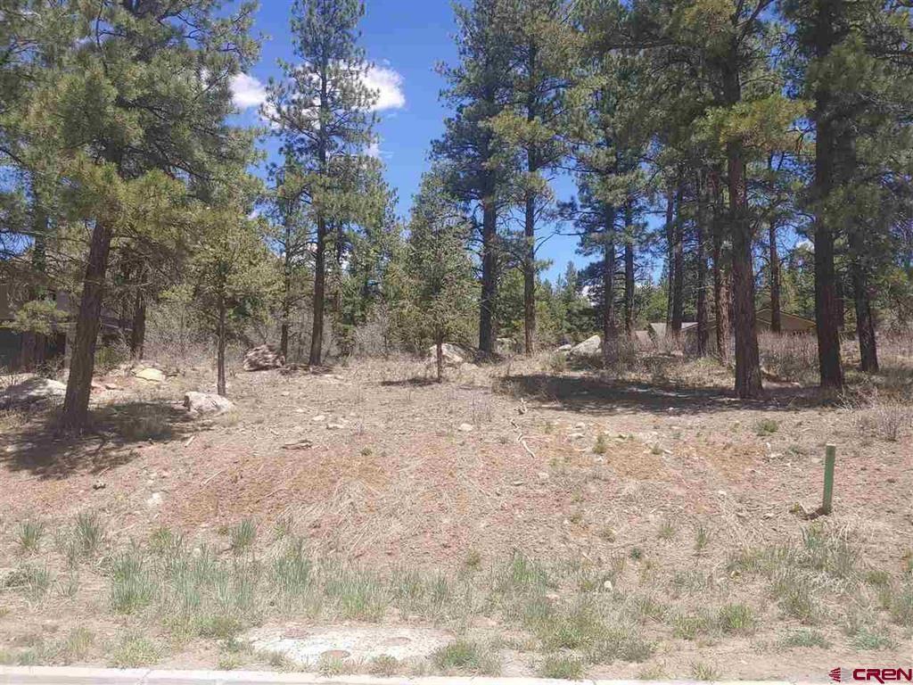 Photo of 132 Wood Rose Lane, Durango, CO 81301 (MLS # 781932)