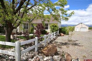 Photo of 20737 Nowhere Road, Eckert, CO 81416 (MLS # 757937)