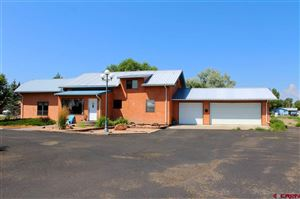 Photo of 580 White Pine Drive, Alamosa, CO 81101 (MLS # 748961)