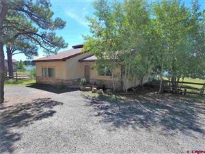 Photo of 1836 CR 600 Road, Pagosa Springs, CO 81147 (MLS # 755963)