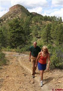 Tiny photo for (Lot 54) 57 Wild Iris Avenue, Durango, CO 81301 (MLS # 750965)