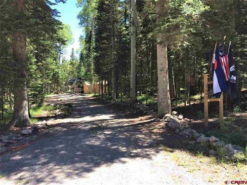 Photo of 603 Hazel Lake Drive, Cimarron, CO 81220 (MLS # 769968)