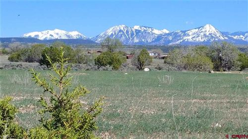 Photo of Lot 5 Pine Ridge Road, Cedaredge, CO 81413 (MLS # 769976)