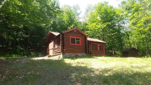 Photo of 725 OLMSTEDVILLE RD, Chester, NY 12817 (MLS # 202020867)