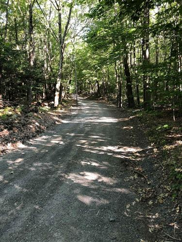 Photo of 0 FIRE TOWER RD, Grafton, NY 12138 (MLS # 202025958)