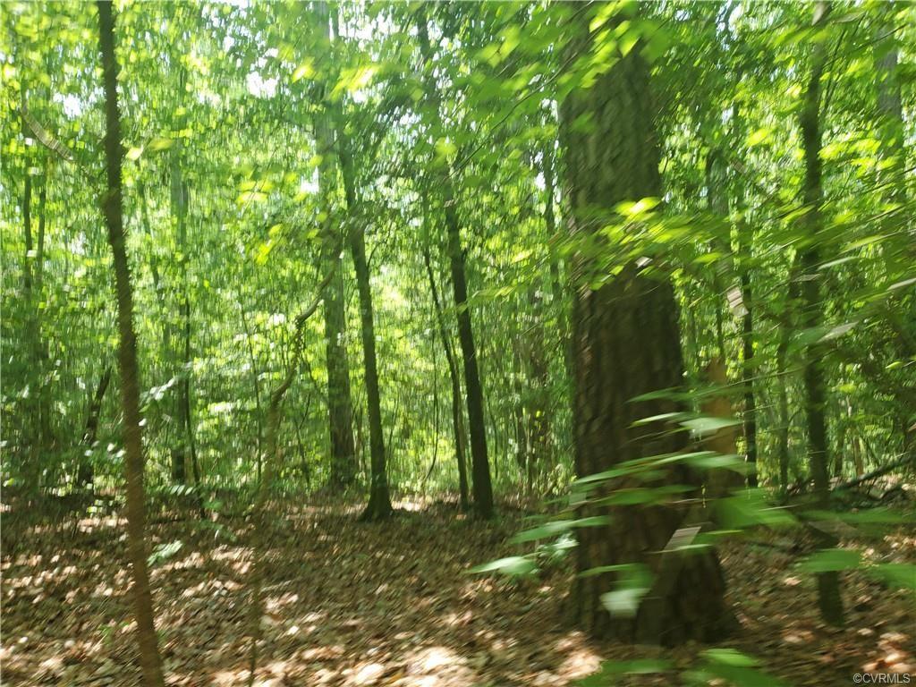 Photo for TBD Pocahontas Trail, Providence Forge, VA 23140 (MLS # 2020110)