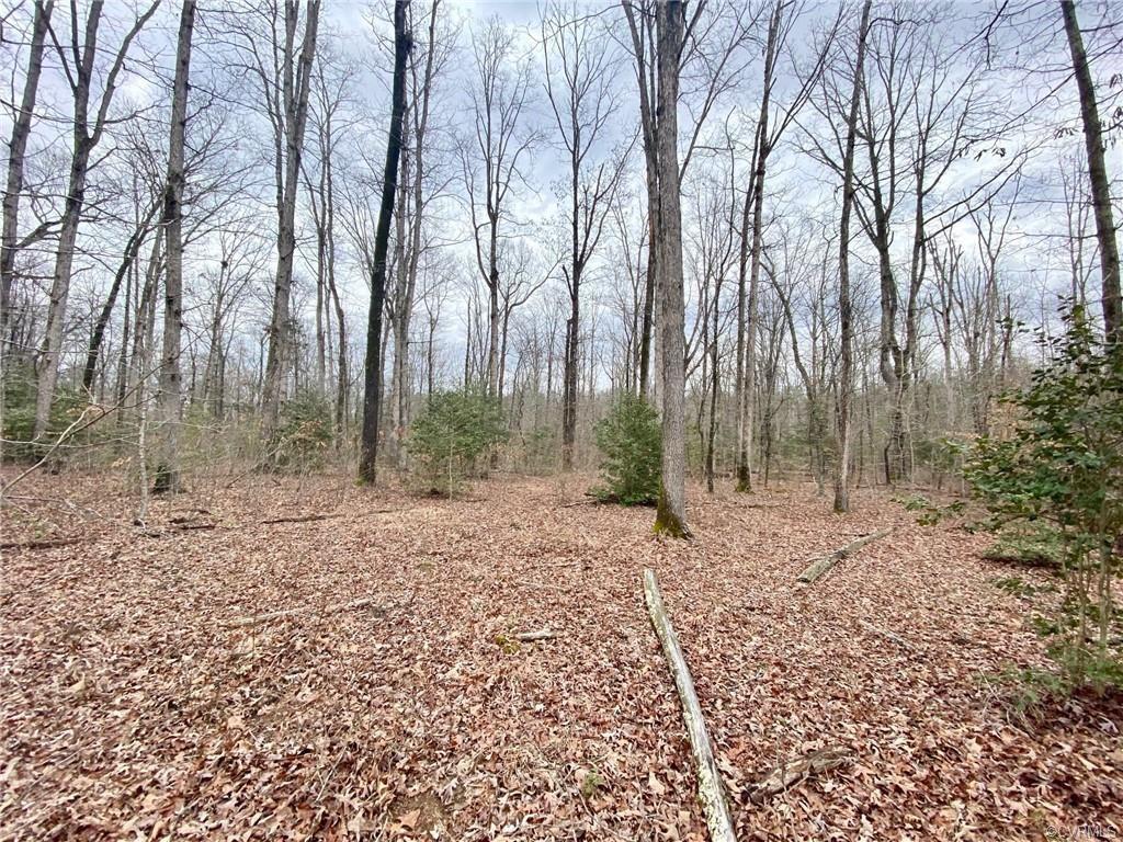 Photo of 0 Huguenot Trail, Powhatan, VA 23139 (MLS # 2103247)