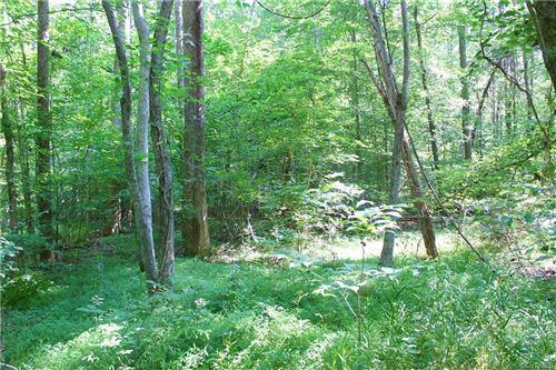 Tiny photo for 000 Pinegrove Road, Cumberland, VA 23040 (MLS # 2020318)