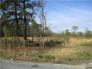 Tiny photo for 18-29 Va. Nelsons Bridge, King William, VA 23069 (MLS # 1911357)