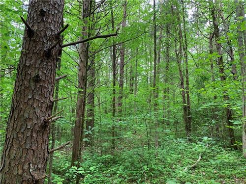 Photo of 0 Stavemill Rd, Powhatan, VA 23139 (MLS # 2015582)