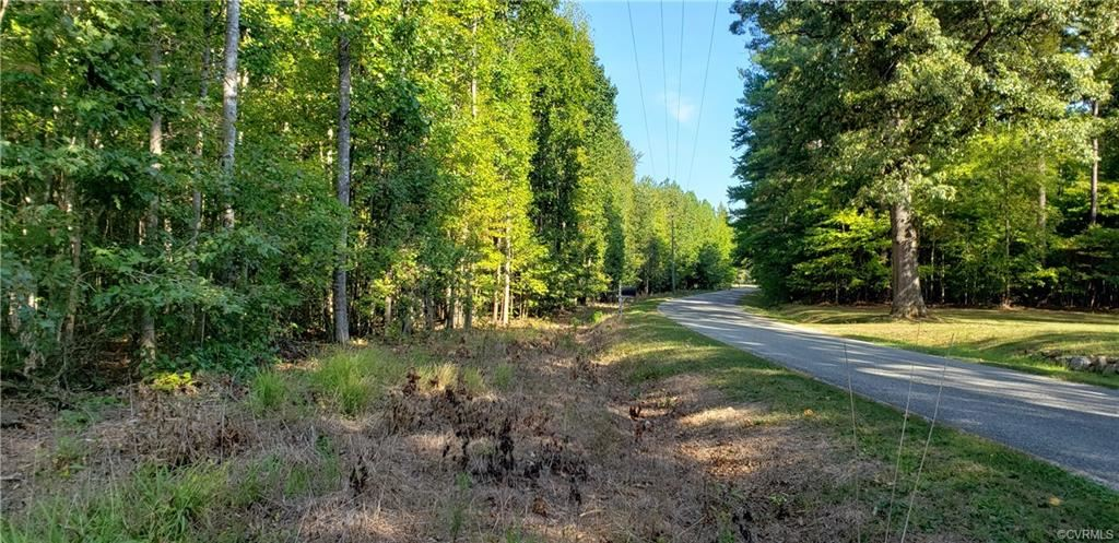 Photo for 0000 Fowlkes Bridge Road, Amelia, VA 23002 (MLS # 1932802)