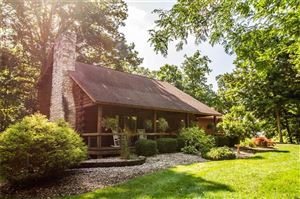 Photo of 8821 Coletown Lightsville Road, Greenville, OH 45331 (MLS # 796320)