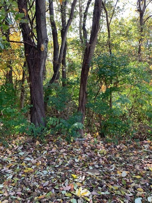 Photo for 0 Franora Lane, Gratis Township, OH 45042 (MLS # 804675)