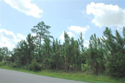 Tiny photo for 2625 Slow Flight Drive, Port Orange, FL 32128 (MLS # 1039299)