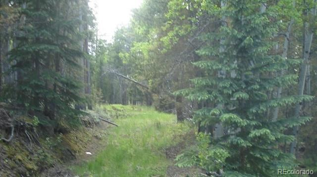 6803 Snowshoe Trail, Evergreen, CO 80439 - #: 7439065