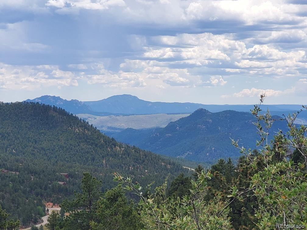 31625 Half Peak Trail, Pine, CO 80470 - #: 5507202