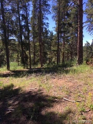 27635 Stagecoach Road, Conifer, CO 80433 - #: 4640298