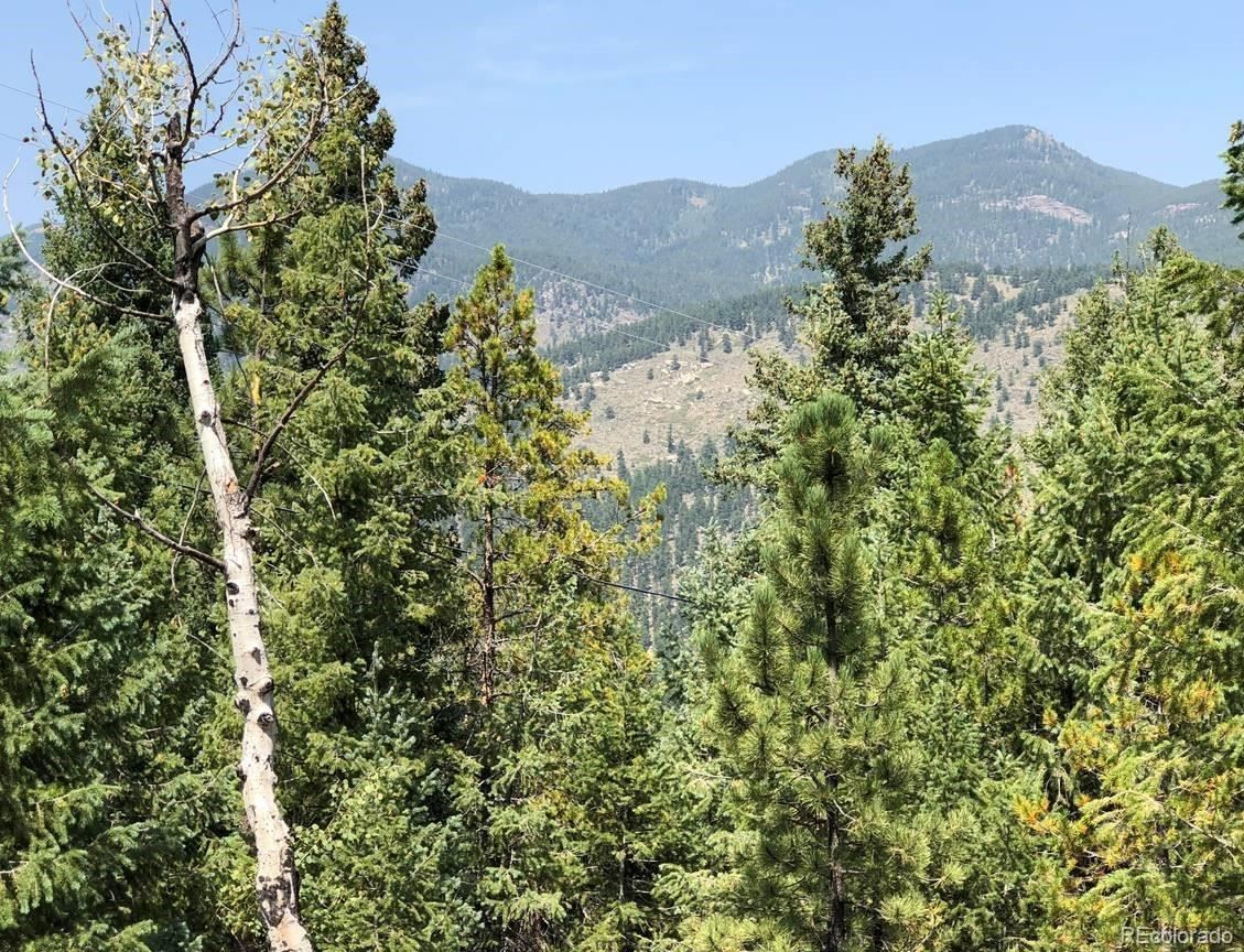 33864  Bergen View Trail, Evergreen, CO 80439 - #: 5494463