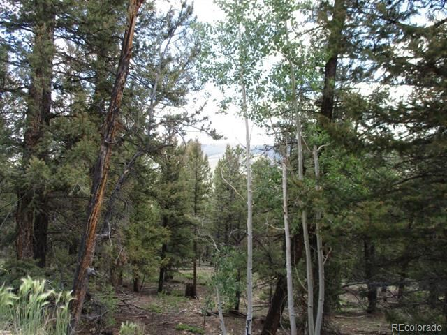 0 Redhill Forest, Fairplay, CO 80440 - #: 5164513