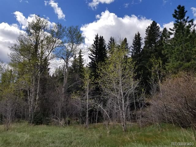 Lot 11 Witter Gulch Road, Evergreen, CO 80439 - #: 5271570