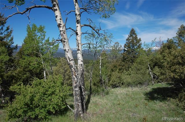 New to be determined Baird Road, Conifer, CO 80433 - #: 4576615