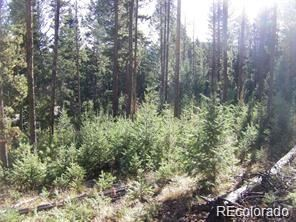 0 Snowshoe Road, Evergreen, CO 80439 - #: 4729705