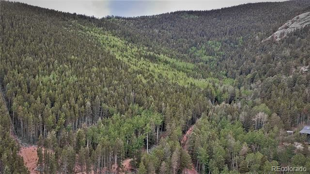 10498 Christopher Drive, Conifer, CO 80433 - #: 8923948