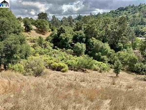 Photo of 241 Orchard Rd, ORINDA, CA 94563 (MLS # 40885008)