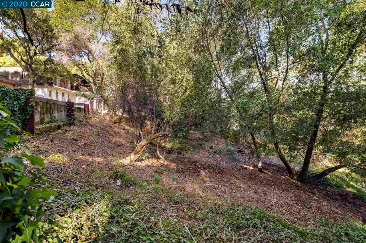 Photo for 0 Oak Rd, ORINDA, CA 94563 (MLS # 40930012)
