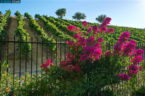 Photo of 1852 Viognier Court, BRENTWOOD, CA 94513 (MLS # 40908200)