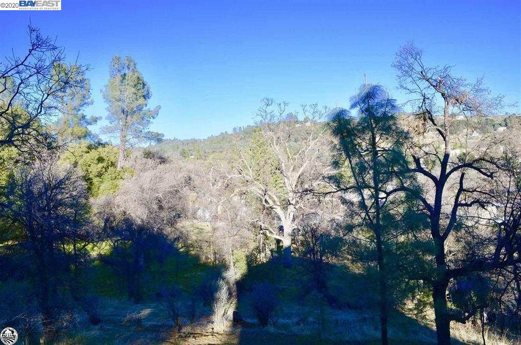 Photo for 20963 Spanish Grant Dr, SONORA, CA 95370 (MLS # 40910496)