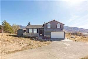 Photo of 724 Thorpe Dr, Spring Creek, NV 89815 (MLS # 3618130)